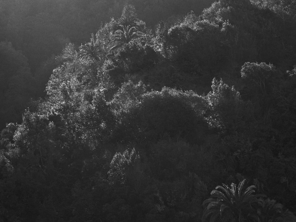 Meditation Canary Islands