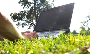 Typing on a pc laptop in a park on the grass under summer sun