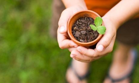 Beyond capitalism: not-for-profit business ethos motivates sustainable behaviour