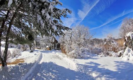 Long Trail, Melville Memorial Park Setauket Long Island