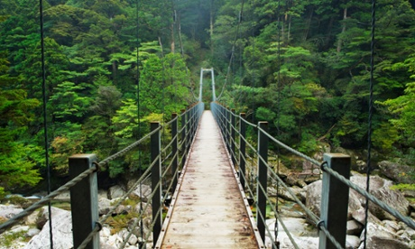 Yakushima, Japan: an island of natural wonders