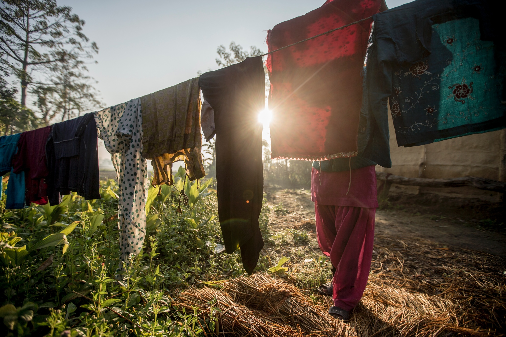 Nepal's women of the Terai Arc become forest ...