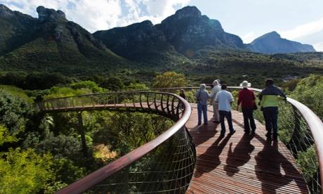 Visitors walk along the new Boomslang at Kirstenbosch botanical gardens.