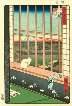 Asakusa Ricefields and Torinomachi Festival