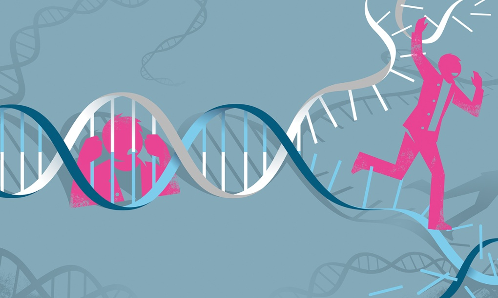 Do you genes determine your entire life?