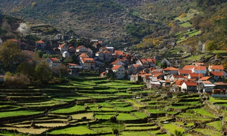 Terraced fields near Soajo, Peneda-Geres national park.
