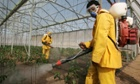 The study asked men about their consumption of fruit and vegetables known to have high pesticide residues.
