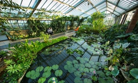 Kew Gardens funding is 'recipe for failure', warn MPs