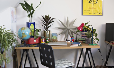 Indoor gardening: it's time for a houseplant makeover