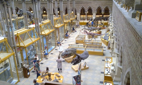 Inside Oxford's Museum of Natural History
