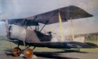 A Strutter biplane.