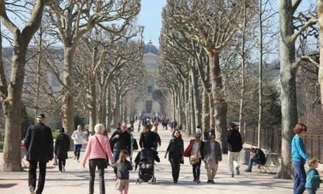 10 best museum cafes restaurants in paris for Restaurant jardin des plantes paris