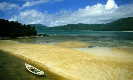 Goldie on Phuket, Thailand: what to see and where to go