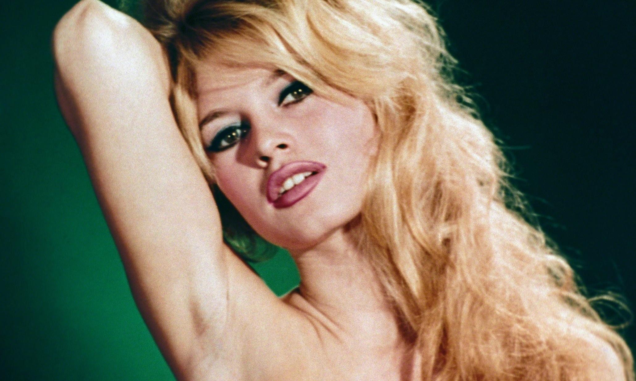Brigitte Bardot To Sue St Tropez Artist For Using Likeness