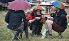 Glastonbury Festival 2014 feature