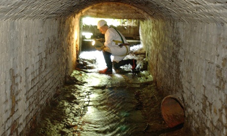 Cocaine in London sewers at highest level in Europe
