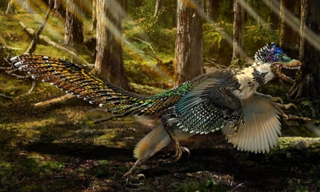 Zhenyuanlong suni: biggest ever winged dinosaur is found in China