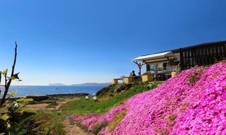 Quintilio bar, near Alghero, Sardinia