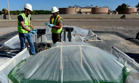 The key to water security could be lurking in a New Mexico sewage farm