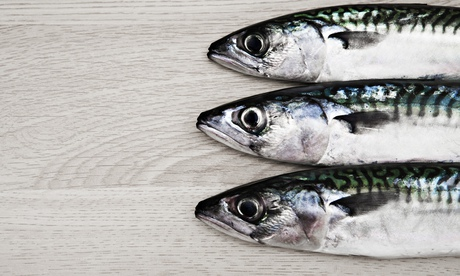 Will fish oil keep my brain young?