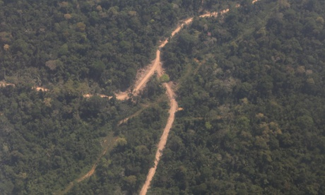 Aerial pictures reveal rampant illegal logging in Peru's Amazon forest