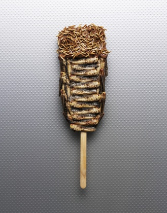 A cricket, mealworm and chocolate lollipop