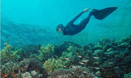 Sarah Campbell, free diver