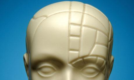 A bust of a phrenology head