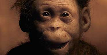 Selam, the three-year-old from 3.3m years ago | Science | The Guardian
