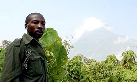Virunga park warden