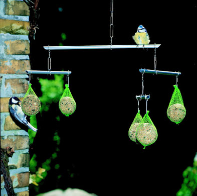 Best bird feeders: Bird feeder
