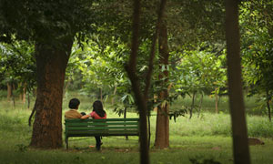 Couple in the park
