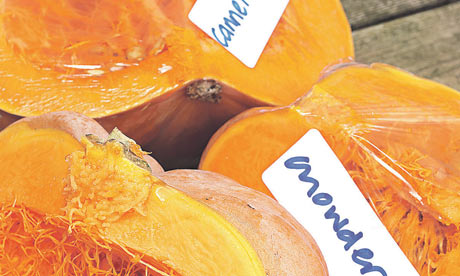 Pumpkins labelled for use