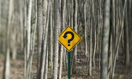 "Vaizdo rezultatas pagal užklausą ""question forest"""