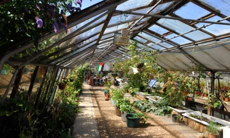 The restored Grow Heathrow glasshouse