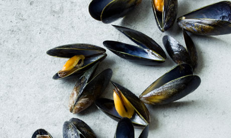Why mussels are good for you | Life and style | The Guardian