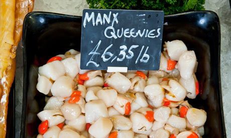 Isle of Man queen scallops