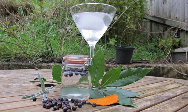 Make your own gin and tonic | Life and style | The Guardian