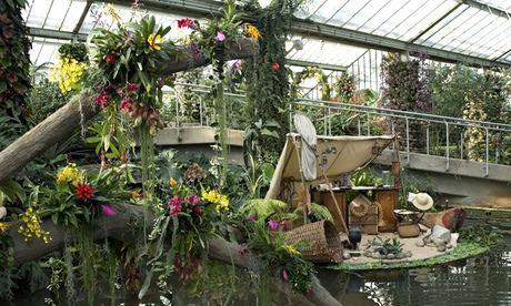 Kew Orchid Festival 2014