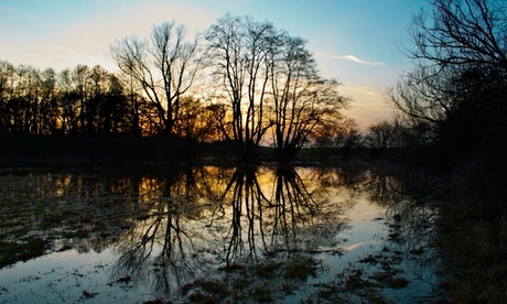 Tom Hoblyn's flooded meadow