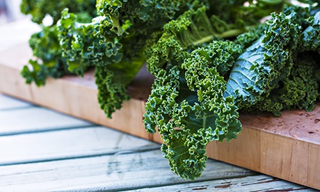 This is an image of Kale