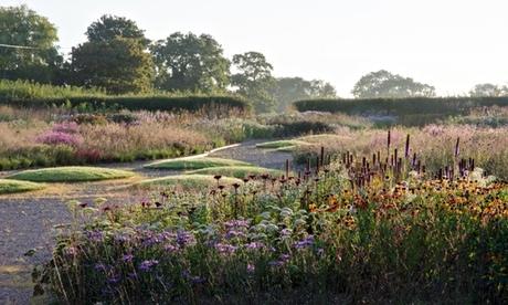 Oudolf Field at Hauser & Wirth in Somerset