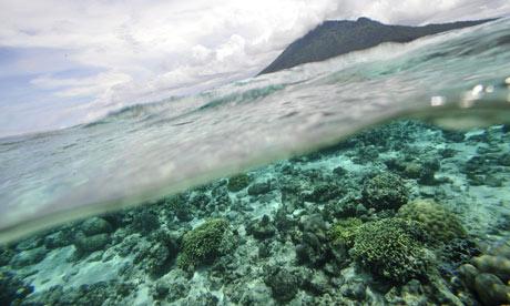 marine sea