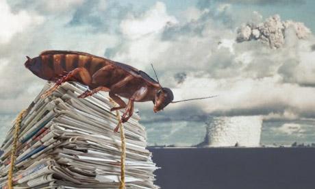 cockroach nuclear