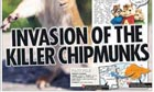 The Sun: 'Invasion of the killer chipmunks'