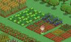 gamefarm