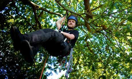 ben williams tree surgeon