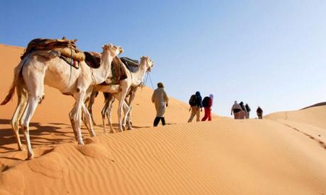 travelin across sahara beyond