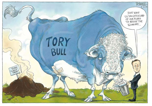 Chris Riddell on David Cameron's Europe policy