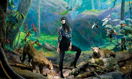 Bat For Lashes in leopard diorama